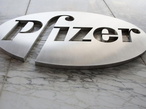 FDA: Chinese Pfizer plant hid failures, used old ingredients - Business Standard | Health Freedom | Scoop.it