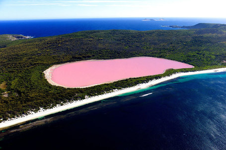 Lake Hillier, Australia | My Photo | Scoop.it