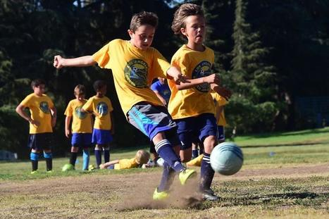 Are you a good youth sports coach? New survey says coaches, parents push too hard - The Boston Globe | Sports and Performance Psychology | Scoop.it
