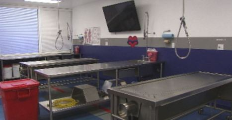 Full access tour of valley full body donation facility - KPHO Phoenix | Sports Facility Management 4480969 | Scoop.it