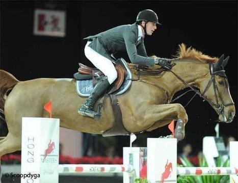 CEI Fontainebleau : adjugé, vendu ! | GrandPrix-replay.com | Arabian Horses | Scoop.it