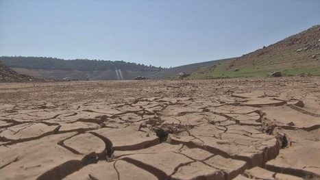 New state water conservation numbers to be released   water   Scoop.it