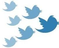 3 outils pour savoir quand vous perdez des followers. - Les outils de la veille | La formation à distance | Scoop.it
