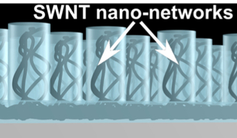 Ordered carbon-nanotube design may increase conductivity of solar cells by 100 million times | Amazing Science | Scoop.it