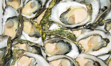 Pairing Wine with Oysters | Gayot | French Culture - Cuisine, Wine and Dessert | Scoop.it