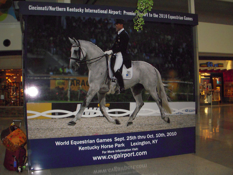 Olympic Dressage: London Olympics contest may topple records | Reuters | Equestrian Olympics 2012 | Scoop.it