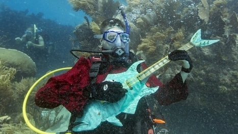 Hundreds of divers, snorkelers converge in Florida Keys for for underwater 'concert' | Ab's Scuba diving news | Scoop.it