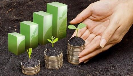Pour une nouvelle monnaie dédiée au climat | Innovation sociale | Scoop.it