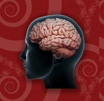 9 1/2 Need-to-Know Facts About Traumatic Brain Injury | Traumatic Brain Injuries | Scoop.it
