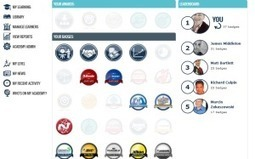 Looking at a Gamified LMS Platform « Karl Kapp | MDR_Blended Learning | Scoop.it