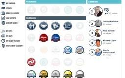Looking at a Gamified LMS Platform | Zentrum für multimediales Lehren und Lernen (LLZ) | Scoop.it