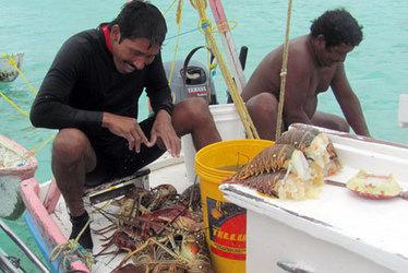 Netting Change for Fisheries in Belize | Belize in Social Media | Scoop.it