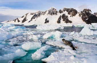 New Theory for Why Antarctic Sea Ice Is Growing | GMOs & FOOD, WATER & SOIL MATTERS | Scoop.it