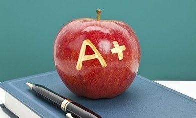 Are grades at postgraduate level irrelevant?   Higher Education and academic research   Scoop.it
