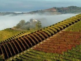 La classifica del Wine Enthusiast: il Piemonte nella top ten mondiale dei viaggi tra vigneti e cantine | Gavi e Dintorni: vino, cibo, territorio, eventi e cultura | Scoop.it