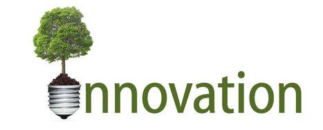 Les secrets de l'innovation : Innover dans un monde complexe et changeant. | Le Zinc de Co | Scoop.it