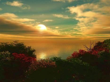 nature sunset picture hd 637 wallpaper | naturewallpaperhd | Scoop.it