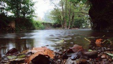 Médicaments, l'invisible pollution de l'eau | Chronique d'un pays où il ne se passe rien... ou presque ! | Scoop.it