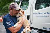 Rescued Arkansas dogs start new lives | Pet News | Scoop.it