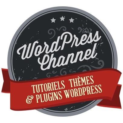 Industrialiser votre maintenance sous WordPress | Worpress & co | Scoop.it