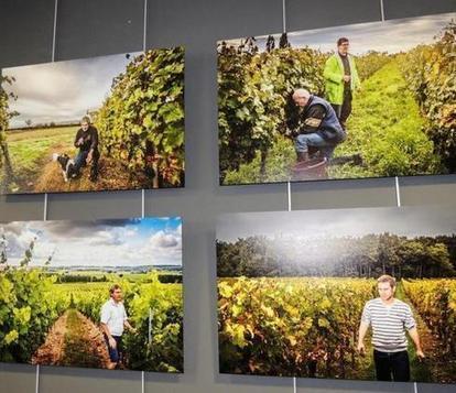 Les paysages s'exposent au Cube - 16/06/2014, Panzoult (37) | Info locales et Touraine | Scoop.it