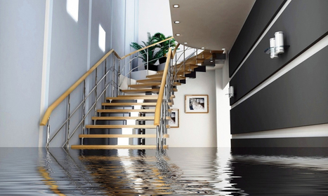 How Can Carpet Flood Help you in Times of Flood? | Capital Facility Services | Scoop.it