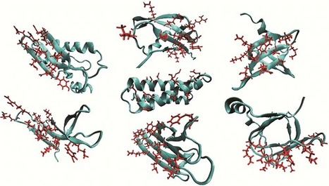 Scaffold Diversification Enhances Effectiveness of a Superlibrary of Hyperthermophilic Proteins | SynBioFromLeukipposInstitute | Scoop.it