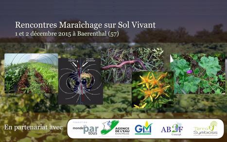 """Les vidéos de la 4e édition des Rencontres Nationales """"Maraîchage sur Sol Vivant"""" sont consultables en ligne !   AC Agriculture de Conservation   Scoop.it"""