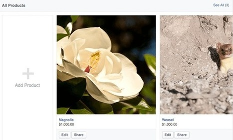 How to Set Up a Shop Section on Your Facebook Page | Social Media Power | Scoop.it