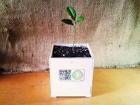 DIY Smart Plant pot | Electronic Programming DIY | Scoop.it