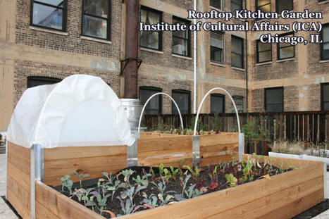 Green Roof Solutions Leads Install of Rooftop Kitchen Garden on Landmark ... - Greenroofs.com | BioArchitecture | Scoop.it