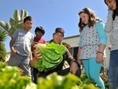 Oxnard students' school garden a bounty of learning - Ventura County Star | Wellington Aquaponics | Scoop.it