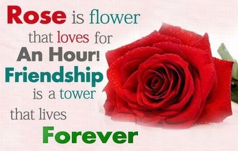 My Childhood Friends, My Besties | Online Flower Delivery in India | Scoop.it