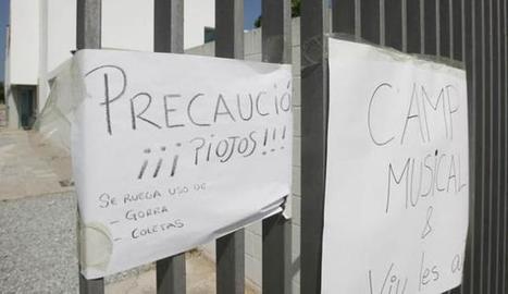 Gorras y coletas contra los piojos - Diario de Ibiza   piojos   Scoop.it