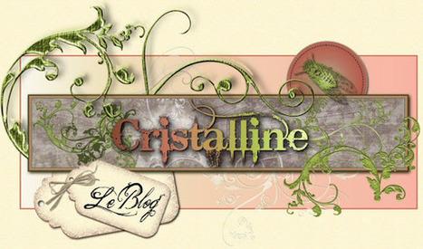 Cristalline fimo, tuto et bijoux en polymère: Tutoriels | ♥Inspiration, coups de coeur & creation♥ | Scoop.it