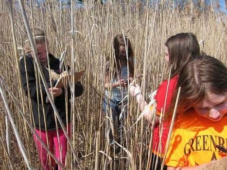 Cloud Computing: A Key Tool in the Fight Against Invasive Species | Connected Teens | Scoop.it