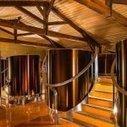 Yquem : le vin non commercialisé pourrait être vendu au négoce | Autour du vin | Scoop.it
