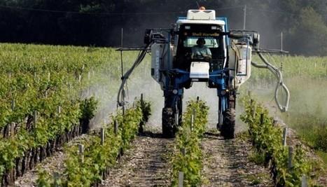 Vendeur de pesticides, j'ai eu un cancer. Depuis, je me suis reconverti dans le bio   Phytosanitaires et pesticides   Scoop.it