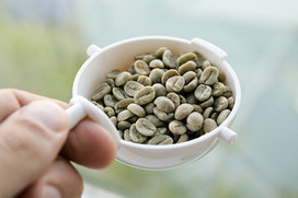 Green Coffee Weight Loss Extract- How, Why And Where? | Weight Loss & Diet Pills | Scoop.it