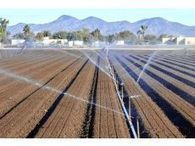 Water conservation ever important to local agriculture | Yuma Sun | CALS in the News | Scoop.it