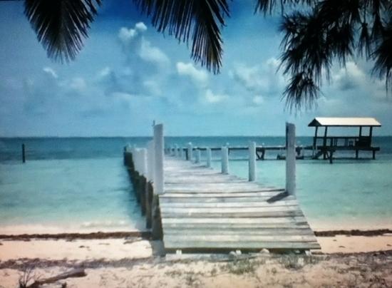 Travel Tips & Deals