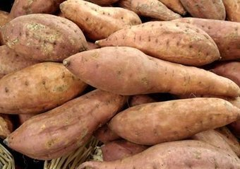 La Patate douce et le diabète de type II | petite courgerie | Scoop.it