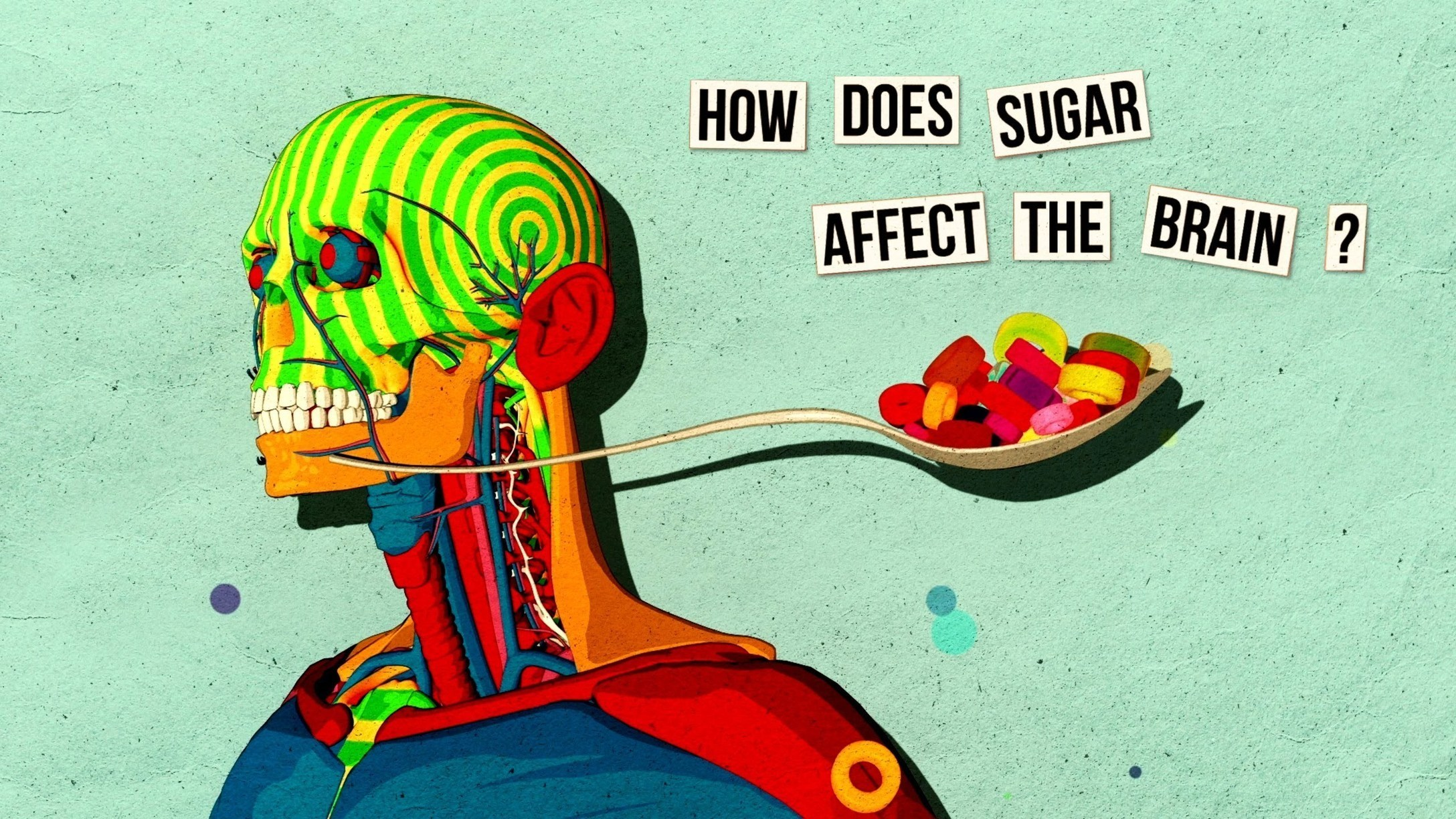 How Sugar Affects the Brain - Nicole Avena - TED-Ed Video