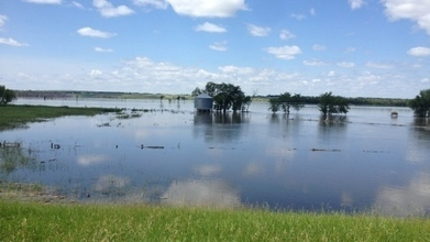 Flood of 2014 a $1B hit for Manitoba farmers: KAP | Lake Winnipeg Basin Information Network News Summary | Scoop.it