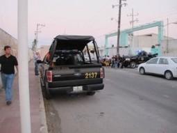 Trágico fin de captura | Pepineros Península de Yucatán | Scoop.it
