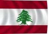 Mr Mayowa: Lebanese mayor arrested for engaging in liver trafficking for $55k! | robot | Scoop.it