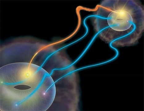 Donuts, math, and superdense teleportation of quantum information | Amazing Science | Scoop.it
