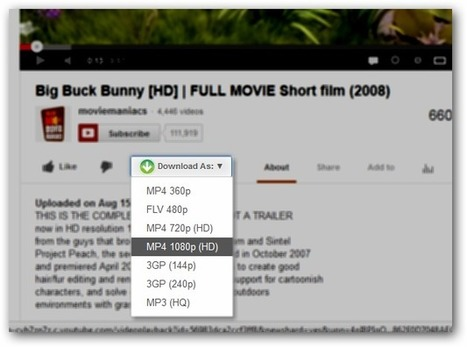 Easy Youtube Video Downloader - The Fast, Minimalistic and Easy To Use Youtube Video Downloader | Technology Gazette | Scoop.it