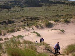 Sand dune fieldwork   Practical skills in Geography   Scoop.it