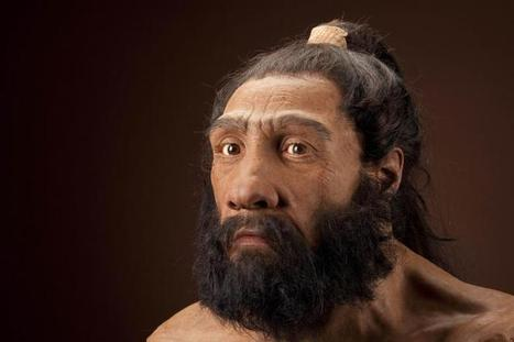 New method confirms humans and Neanderthals interbred | Genomics, NGS and Bioinformatics | Scoop.it